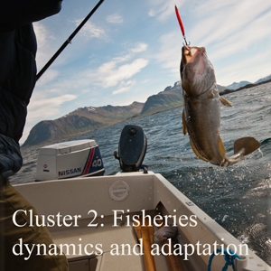 Cluster 2: Fisheries dynamics and adaptation
