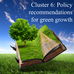 Cluster 6: Policy recomendations for green growth